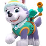 patrulla-canina-juguetes-everest