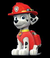 patrulla-canina-marshall