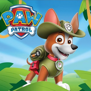 personajes-patrulla-canina-tracker